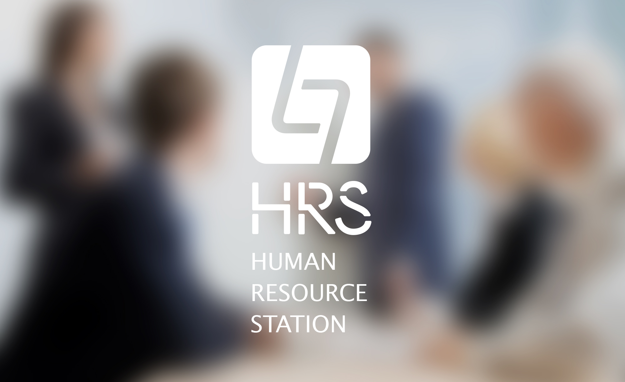 HRS LOGO DESIGN&VI regulations